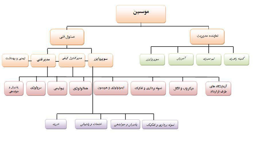 chart sazmani
